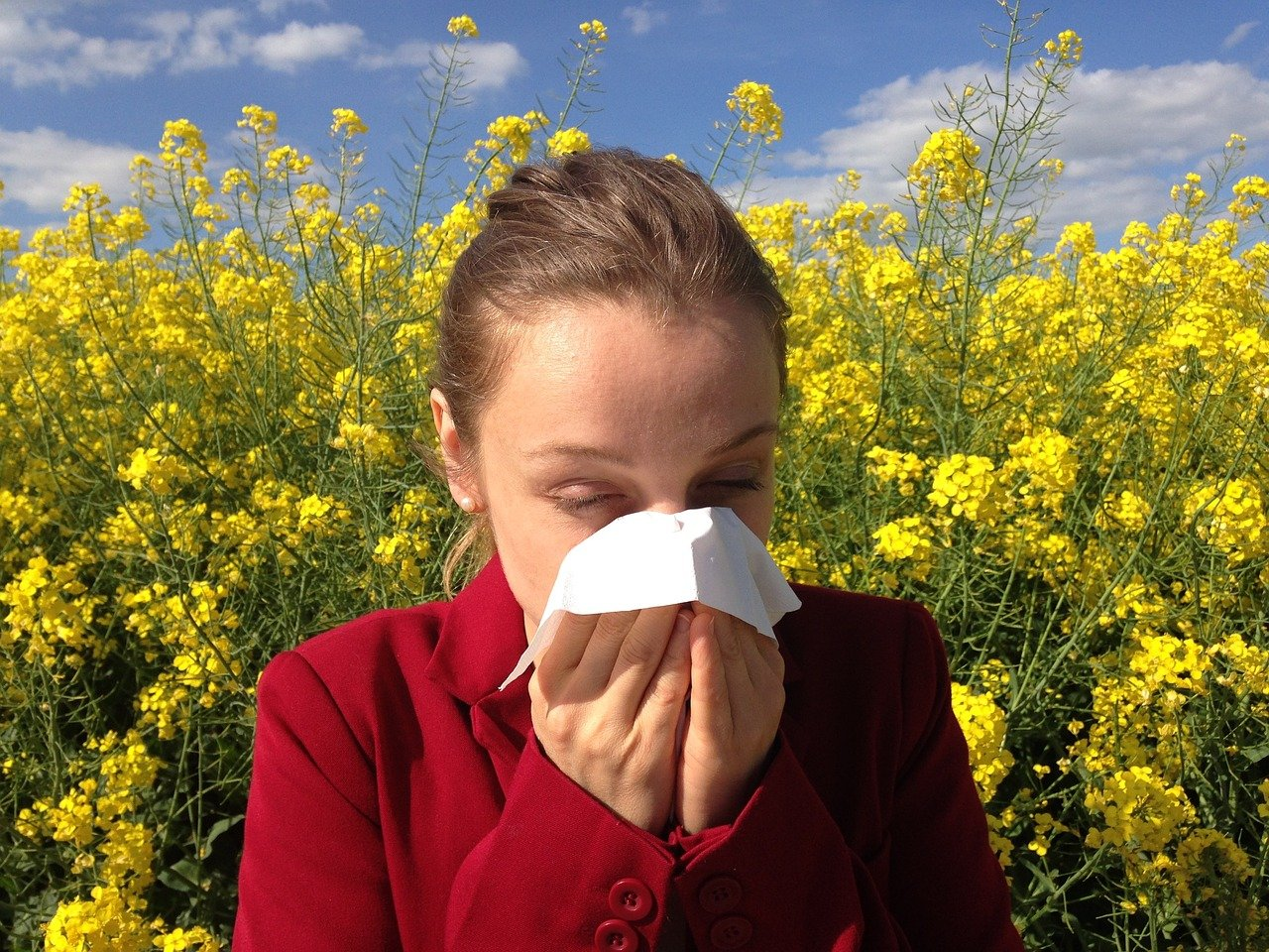 Chiropractic and Allergies