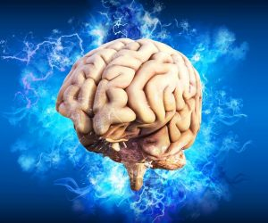 Chiropractic Changes the Way the Brain Controls Muscles