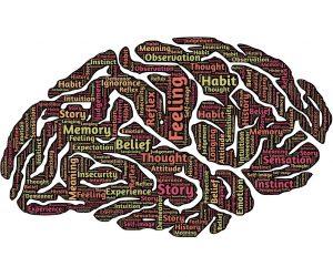 Chiropractic Creates Brain Adaptability (Neuroplasticity)